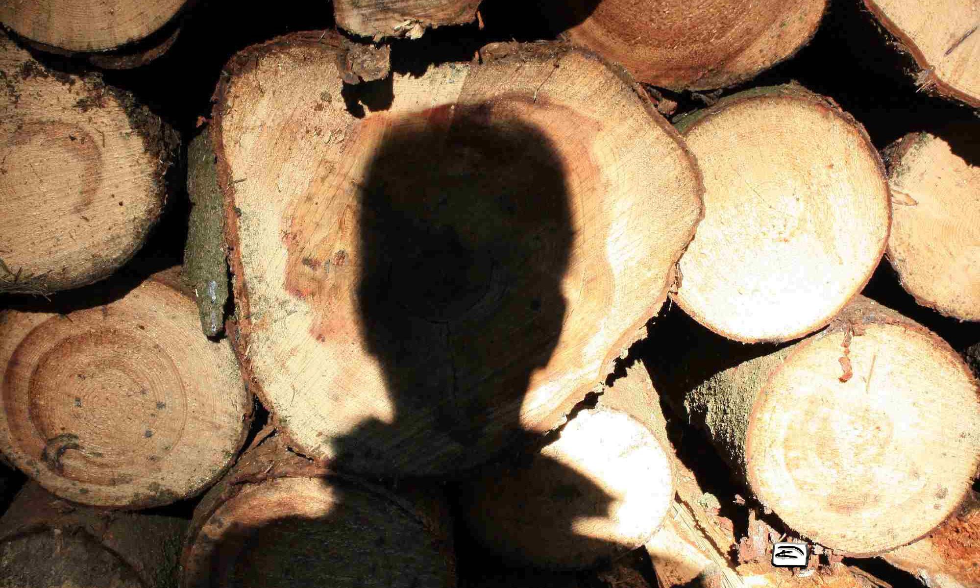 Schattenportrait